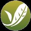 Logo_Discipling